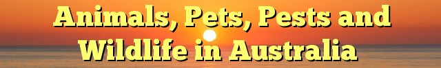Animals, Pets, Pests and Wildlife in Australia