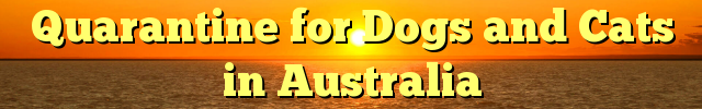 Quarantine for Dogs and Cats in Australia